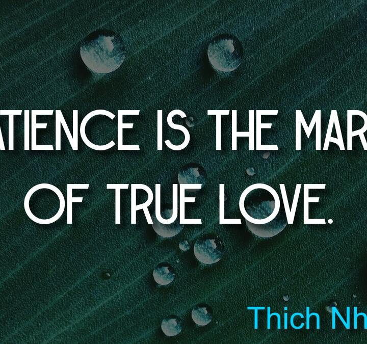 Quotes from Martin Scorsese, Thich Nhat Hanh, Jack Kerouac, Unknown, Martinican proverb.