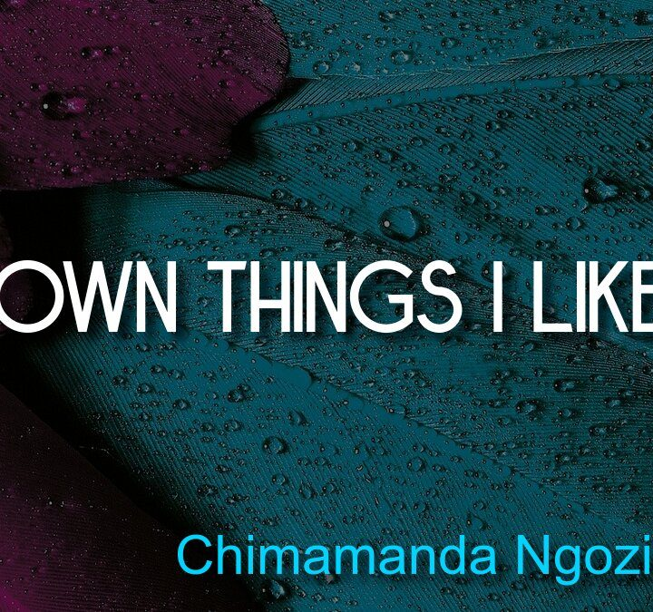 Quotes from Chimamanda Ngozi Adichie, Maria Cantwell, Saint Augustine, J. J. Abrams, John Wooden.