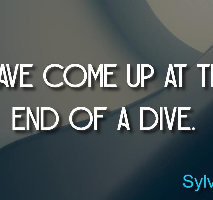 Quotes from Sylvia Earle, Aaron Lynn, Rikki Rogers, Criss Jami, Herman Cain.